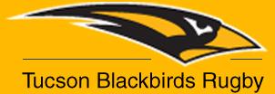 Blackbirds-Logo2
